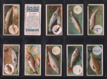 Tobacco cards cigarette cards Fish & Bait 1910 set